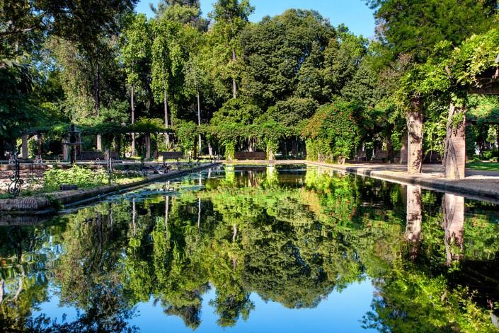 Fotografía de Miguel Portillo de título Espejos de agua