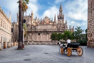 Fotografía de Miguel Portillo. Título: La torre... el templo.