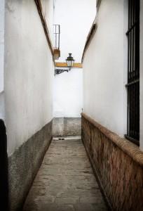 Fotografía de Miguel Portillo - Santa Cruz